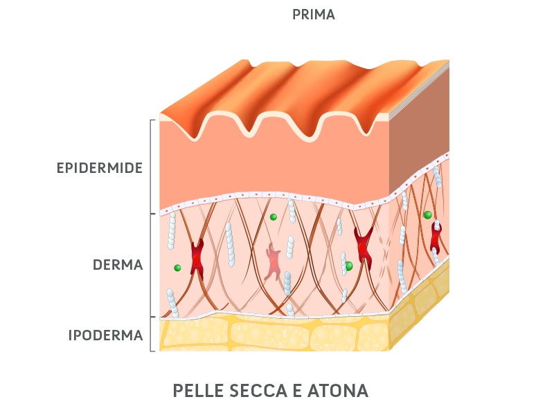 La pelle prima dell'applicazione di Aqua di Sice